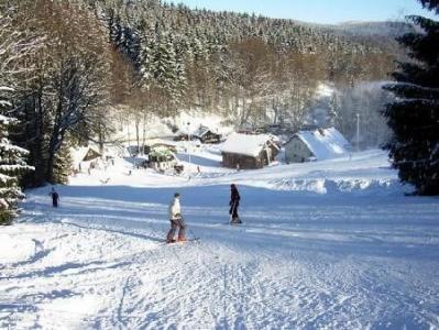 sjezdovka ve skiareálu Svoboda nad Úpou