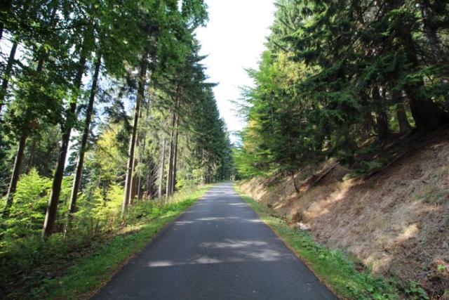 Cyklisticka trasa z Janskych Lazni