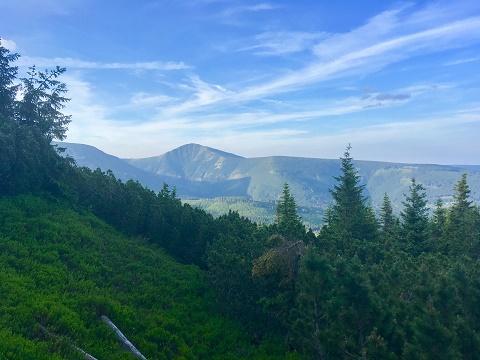 Pohled z Lisci hory na Snezku