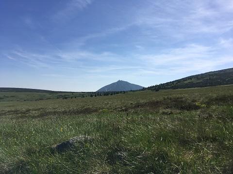 V pozadi hora Snezka
